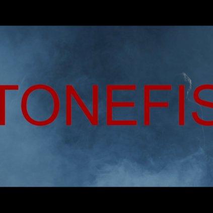 health stonefist
