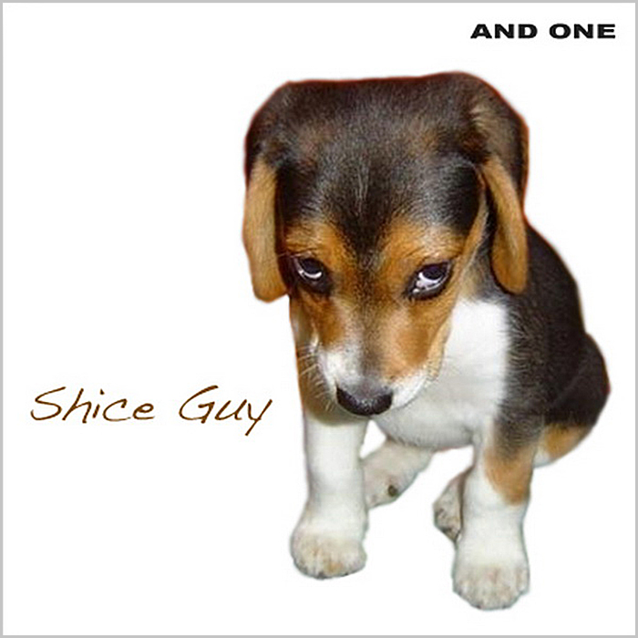 And One   Shice Guy