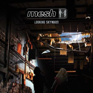 mesh_-_looking_skyward