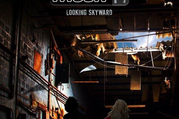mesh_-_looking_skyward