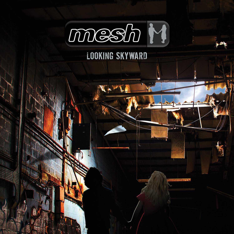 mesh   looking skyward