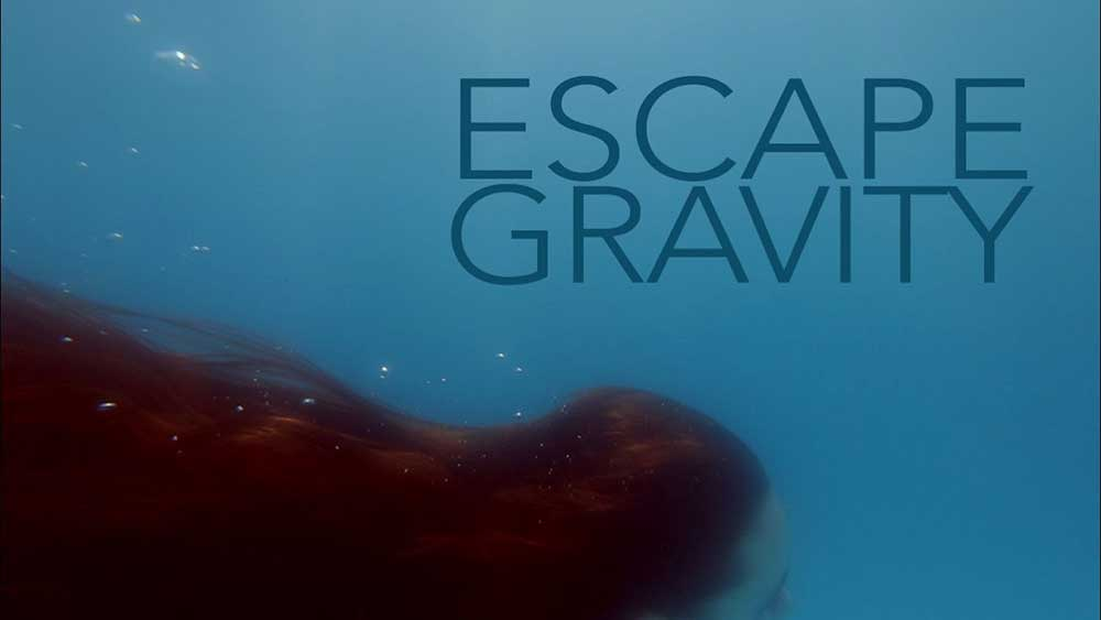 Faderhead Escape Gravity
