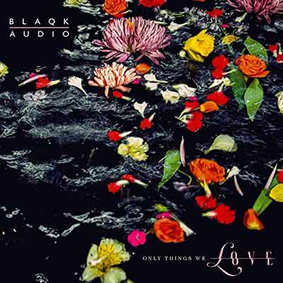 Blaqk Audio - Only Things We Love - Upcoming album