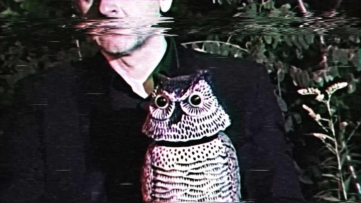 Das Moon - Owl