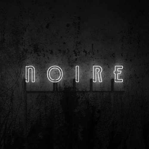 VNV Nation - Noire - Upcoming album
