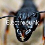 Genre Tag: Electropunk