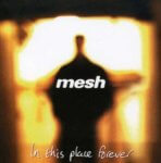Mesh - In This Place Forever (1996)