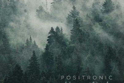 Positronic - Karma's Forest