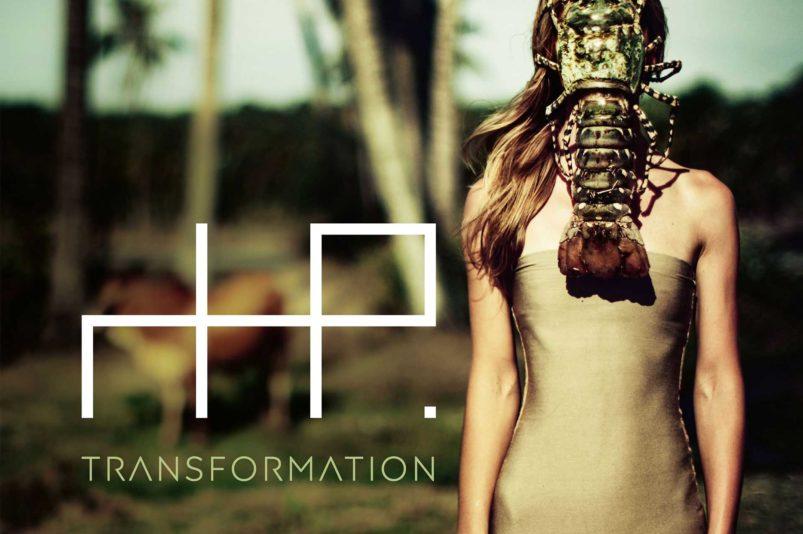 X-Marks The Pedwalk - Transformation